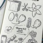 Sketchnote Anleitung Papierblume
